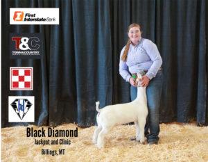 Doe Grand Champion Lexy Dietz copy 300x233 - Town & Country Supply Association Announces Jackpot Award Recipients