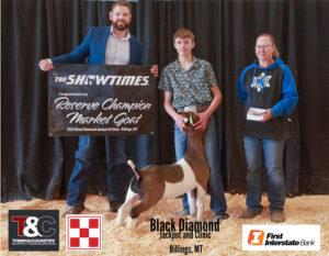 Goat Reserve Champion Jason Huelle copy 300x233 - Town & Country Supply Association Announces Jackpot Award Recipients