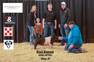 Hog 5th Cooper McNally copy 300x200 - Town & Country Supply Association Announces Jackpot Award Recipients