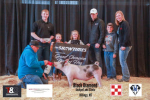Hog Grand Champion Cooper McNally copy 300x200 - Town & Country Supply Association Announces Jackpot Award Recipients