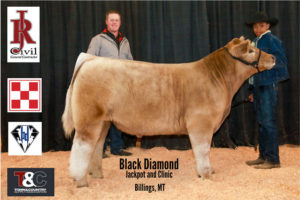Market Beef 4th Justyce Yeager copy 300x200 - Town & Country Supply Association Announces Jackpot Award Recipients